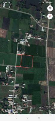 Bán 7900m2 đất nông nghiệp Đức Hòa Thượng