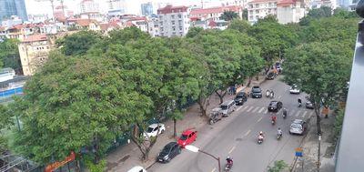 Mặt phố Trần Quốc Hoàn, Vỉa hè 12m, 75m2, 29 tỷ