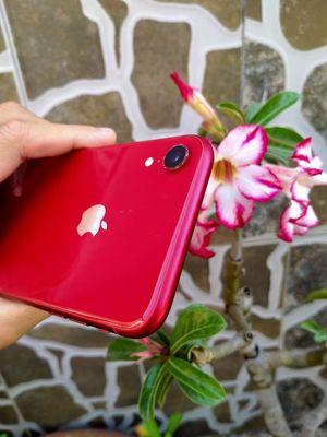 Thanh lý iphone XR đỏ, Q.TẾ đẹp pin 9x bao reset