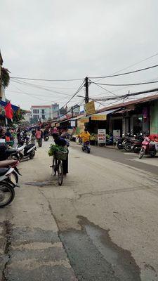 Bán GẤP 74m2 chợ Tam Hưng Thanh Oai, đường oto con