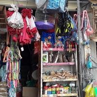 Cửa hàng thú cưng chim cảnh Cô Hạ