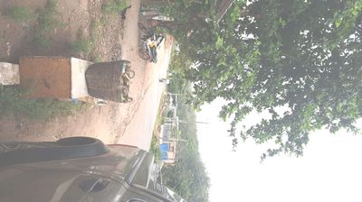 Đất 5x50 sổ riêng tại xã Tân hiệp- Gần Cổng Xanh