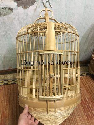Chim khướu thanh lý cả bộ lồng nuôi và lồng tắm