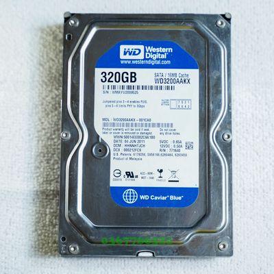 Ổ Cứng HDD Western WD 320GB Blue 3.5 inch SATA