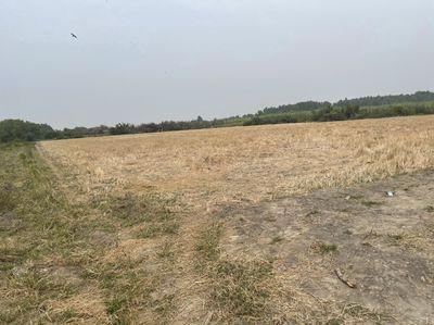 Cần tiền bán đất công xã phú đông huyện nhơn trạch