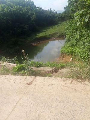 Đất trồng cây view suối khu trung tâm bà nà