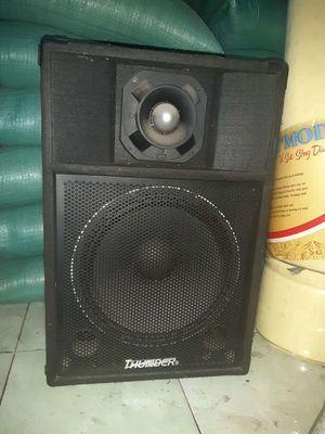 Loa sân khấu bass 40 cm