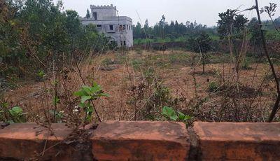 Cần bán 700m đất ở+ vườn