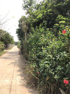 Đất 4.7 sào Bảo Hòa Xuân Lộc gần Quốc Lộ 1A