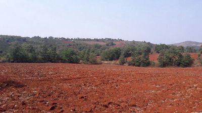 Bán hoặc cho thuê lô đất nông nghiệp 6ha
