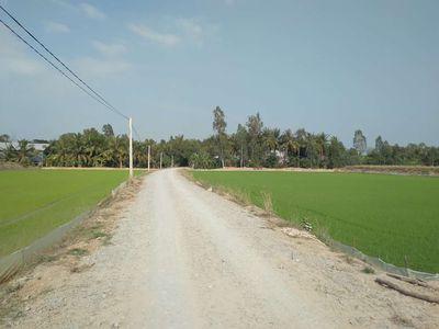 Đất Ruộng 20 công 100x200m Mặt Tiền, Tân Thành B