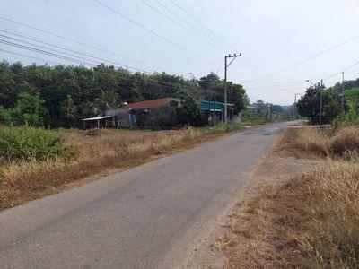 Bán đất đường lộ 1006m2(22.9×58) đất chính chủ