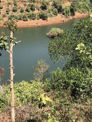 Bán đất 5000m2, đã có sổ hồng, ở Đắk Nông