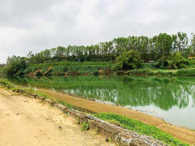 ⭐💥💥bán 1300m2 đất trồng cây sát sông hoà nhơn 🌺