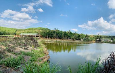 Trang trại mặt tiền 11.5 ha huyện Đăk R'Lấp