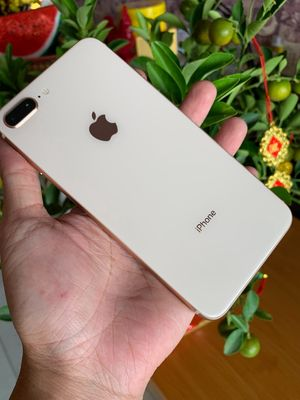 iphone 8pluss 64gb quốc tế bản mỹ màu gold zin áp