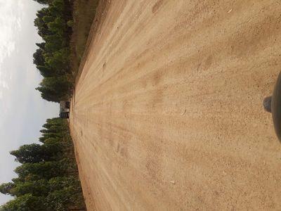 3hecta đất mặt tiền đường ở tân lập,hàm thuận nam