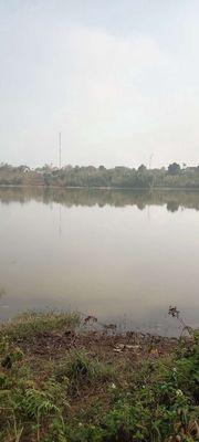View hồ trung giá rẻ