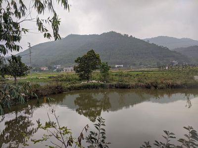 Đất nhà vườn Minh Phú 2100m2,sổ đỏ giá 1.6triệu/m2