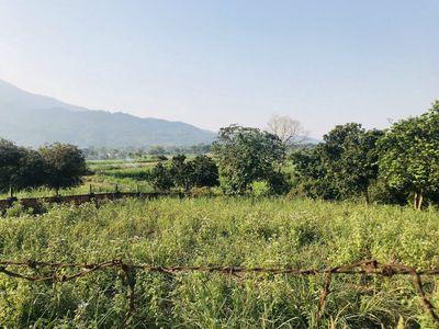 Đất nghỉ dưỡng 1350m2 Yên Bài, Ba Vì, Hà Nội