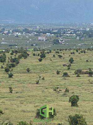 Bán 10,000m2 đất nông nghiệp hồng thái 700tr vuông