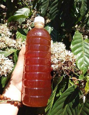 Bán mật ong nguyên chất Lâm Đồng hoa cà phê