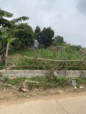 Đất Xã Hạ Bằng Giáp Vành Đai CNC Hòa Lạc Vinsmart