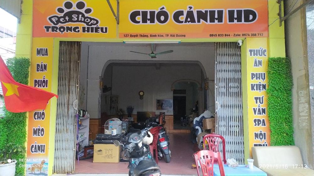 Cửa hàng Chó cảnh HD