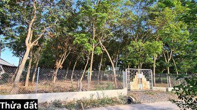 Đất sổ đỏ 5122m², chính chủ Nhơn Trạch, Đồng Nai