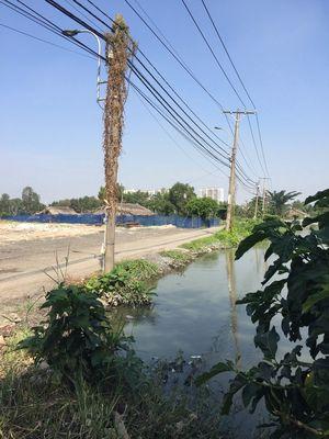 Bán rẻ lô đất khu dân cư 8.700m2 Nguyễn Văn Linh