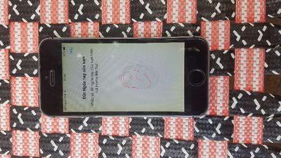 Apple iPhone 5S Màu grey