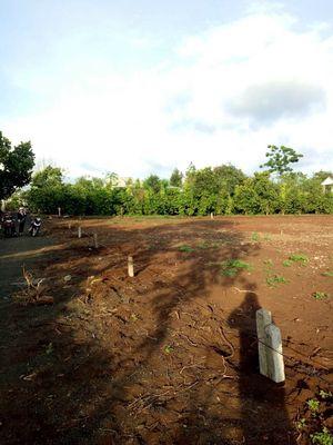 3 lô đất đầu tư đẹp cần gả cho đầu tư - Xã Hoà Phu