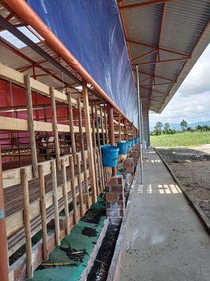 Bán trang trại dê mới xây dựng