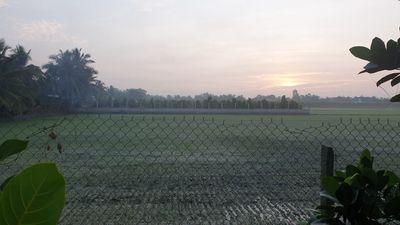 Bán 5300m2 đất vườn trồng cây ăn quả