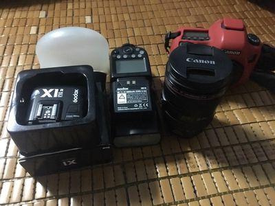Canon 6D 24-105L V860II Magmod Trigger