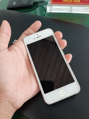 Apple iPhone 5 Trắng