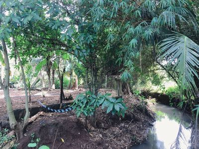 Đất vườn cây ăn trái suối bao quanh đất 3.900m²