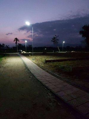 Đất ở ven Đà Nẵng view Rừng Dừa chỉ Vài Trăm