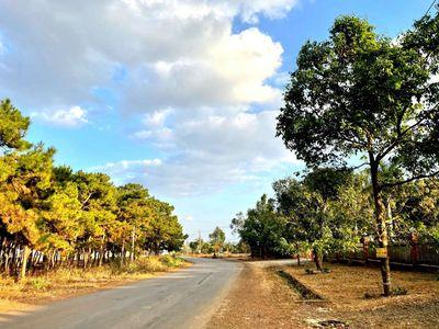 Đất thổ cư hẻm Trường Chinh TP.Pleiku 125m2