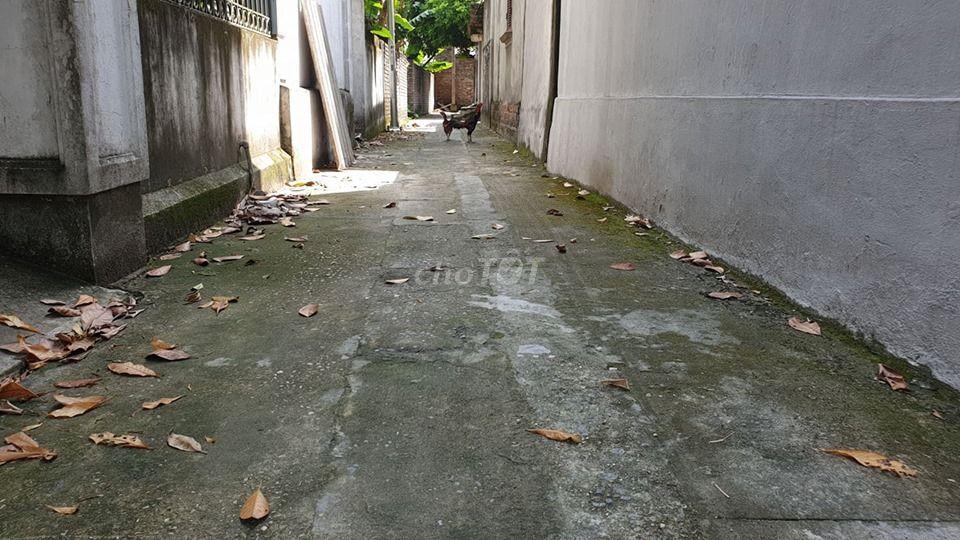 Chính chủ bán đất Dương Quang, Gia Lâm 80m2