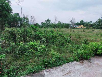 Bán đất xây nhà vườn thôn khương mỹ hoà phong