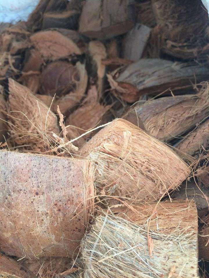 Cần thanh lí 1 nhà vỏ dừa với sơ dừa giá 1 triệu