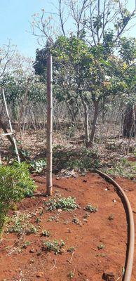 Bán 1,5 hecta đất tại thôn 1 Hòa Thuận,Đạt Lý.BMT
