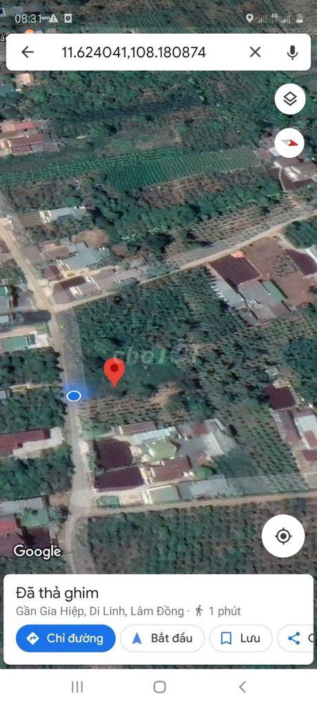 0909805034 - Bán Lô đất nền xã Gia Hiệp Di Linh (15mx45m)