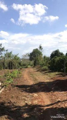 Đất đất rẫy phường khánh xuân 2300m2 Giá 790tr
