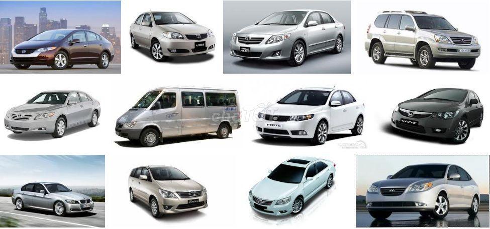 Cho thuê xe ô tô tự lái, Xe Hoa, Cty thuê tháng