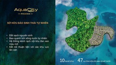 Aquacity phân phu Phoenix Biên Hòa Đồng nai