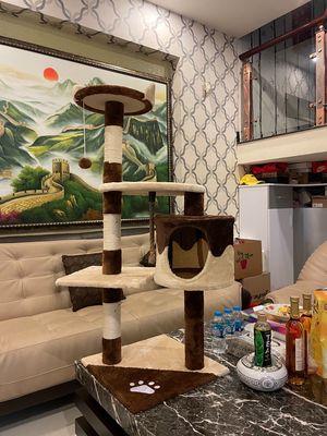 Cattre nhà cây cho mèo size Lớn