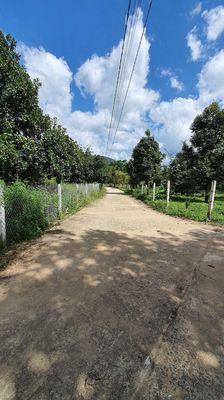 Đất vườn 3.776m2 đường DT 713 cách Bảo Lộc 30km