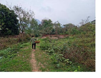 thổ cư sổ đỏ 2600m2 đất sinh thái Minh Trí Sóc Sơn